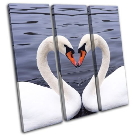 Swans Heart Love Animals - 13-1331(00B)-TR11-LO